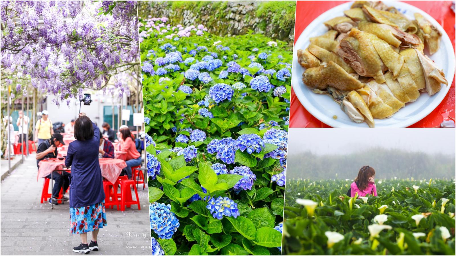 陽明山美食:5間陽明山土雞名單分享,竹子湖餐廳推薦!