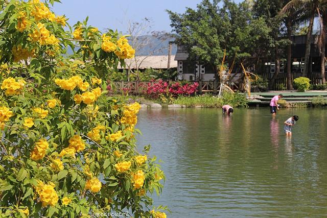 立川漁場,美食,花蓮旅遊,花蓮美食,花蓮美食小吃旅遊景點