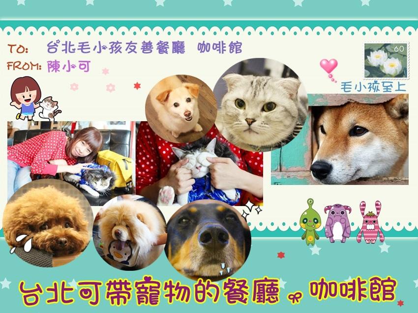 台北咖啡館特輯  可以帶寵物毛小孩的咖啡館 餐廳